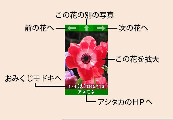 shun-manual-2.jpg